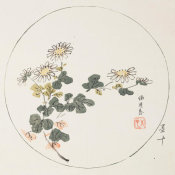 Ten Bamboo Studio - Chrysanthemums in Round Design, 1633 (Ming Dynasty)