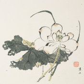 Ten Bamboo Studio - Lotus, 1633 (Ming Dynasty)
