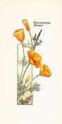 Elisabeth M. Hallowell - California Poppy, ca. 1905