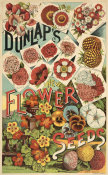 A.H. Dunlap & Sons - Dunlap's new flower seeds, 1886-1906