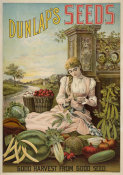 A.H. Dunlap & Sons - Dunlap's Seeds : Good harvest from good seed, 1886-1906