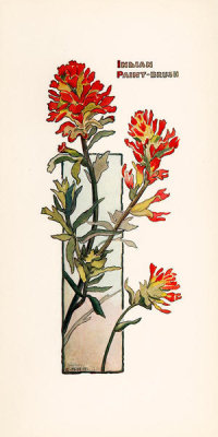 Elisabeth M. Hallowell - Indian Paint Brush, ca. 1905